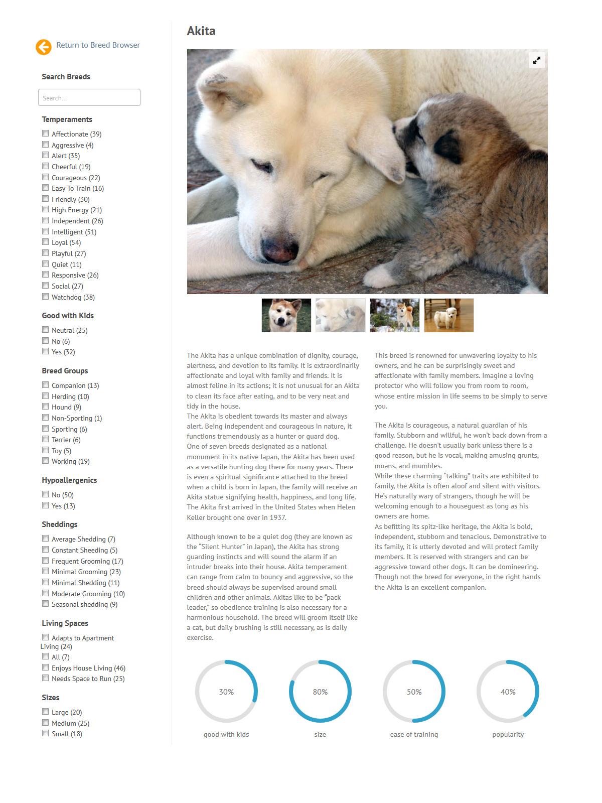 puppies_plus_dogs_akita