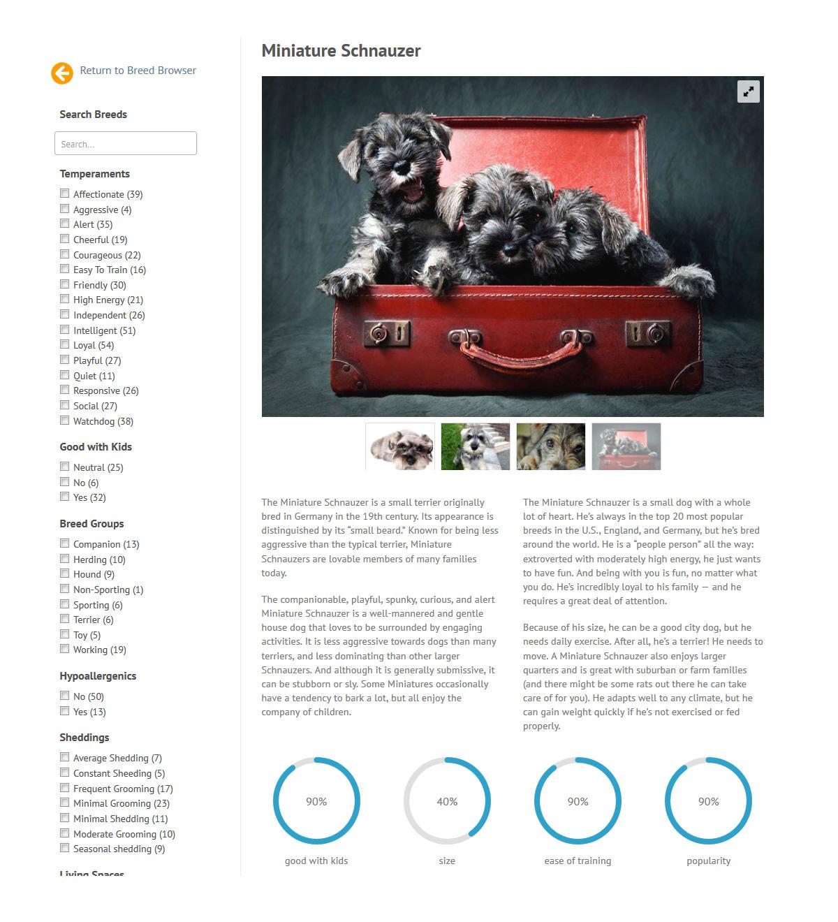 puppies_plus_dogs_mini-schn